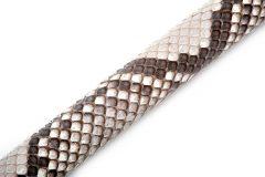 GCWS-Python-SLB-Close Up